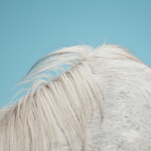 "Listen // Widowspeak – ""Girls"""